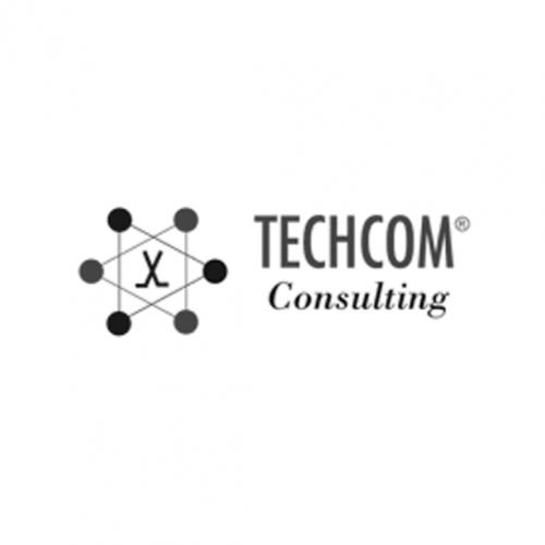Logo TECHCOM Consulting
